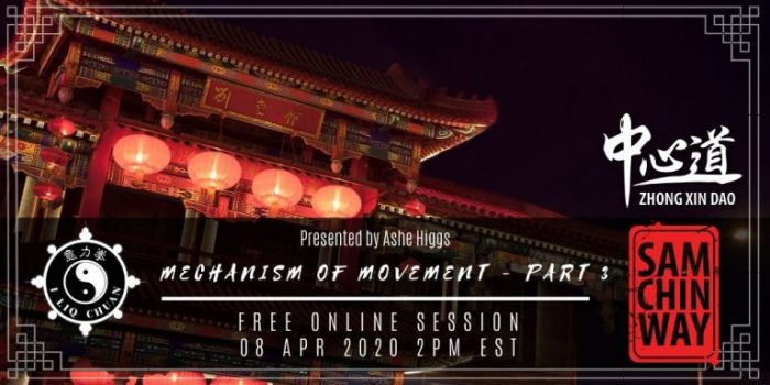 Free Online Session - Mechanism of Movement (Saggital) Presented by Ashe Higgs
