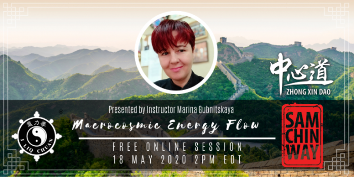 Free Online Session - Macrocosmic Energy Flow by Marina Gubnitskaya
