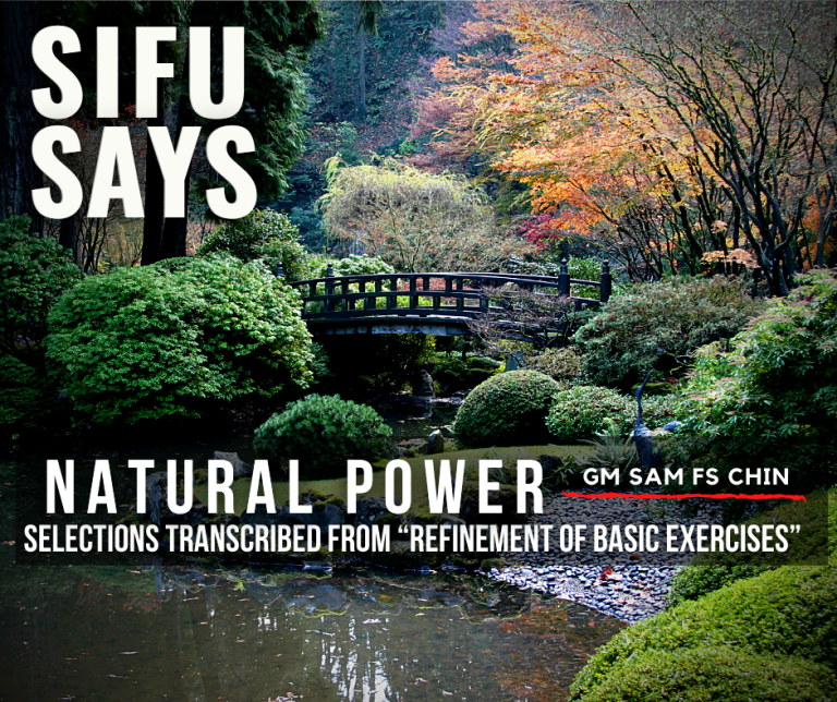 Sifu Says - Natural Power