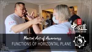 Function of Horizontal Plane